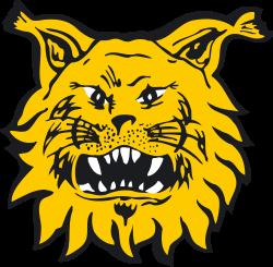 Ilves 2 logo