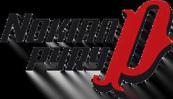Pyry logo